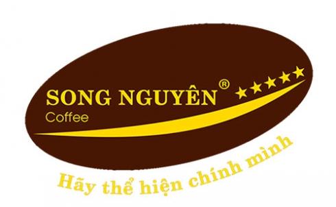 Công ty Danaweb bàn giao Website cho công ty Song Nguyên Việt Nam